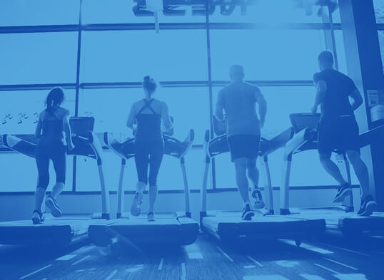 A group of people running on treadmills