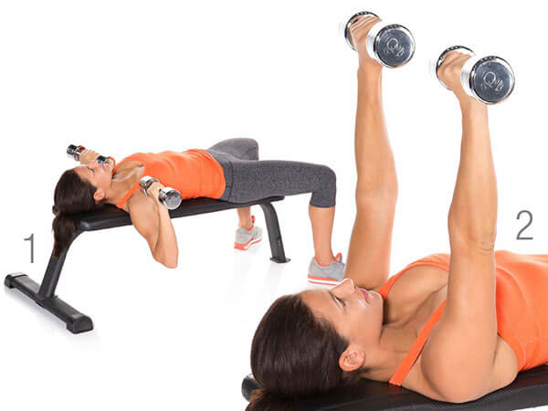 ChSt-DB_Bench_Press_F